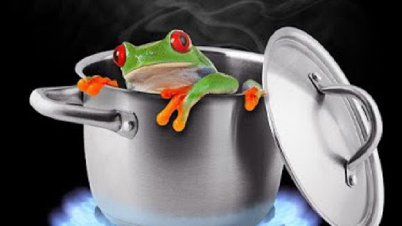El síndrome de la rana hervida guarda una estrecha relación con la situación de la víctima de malos tratos