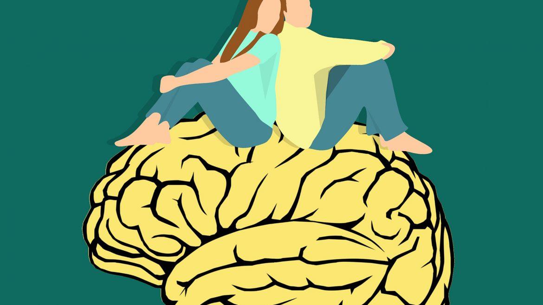 El amor está en el cerebro