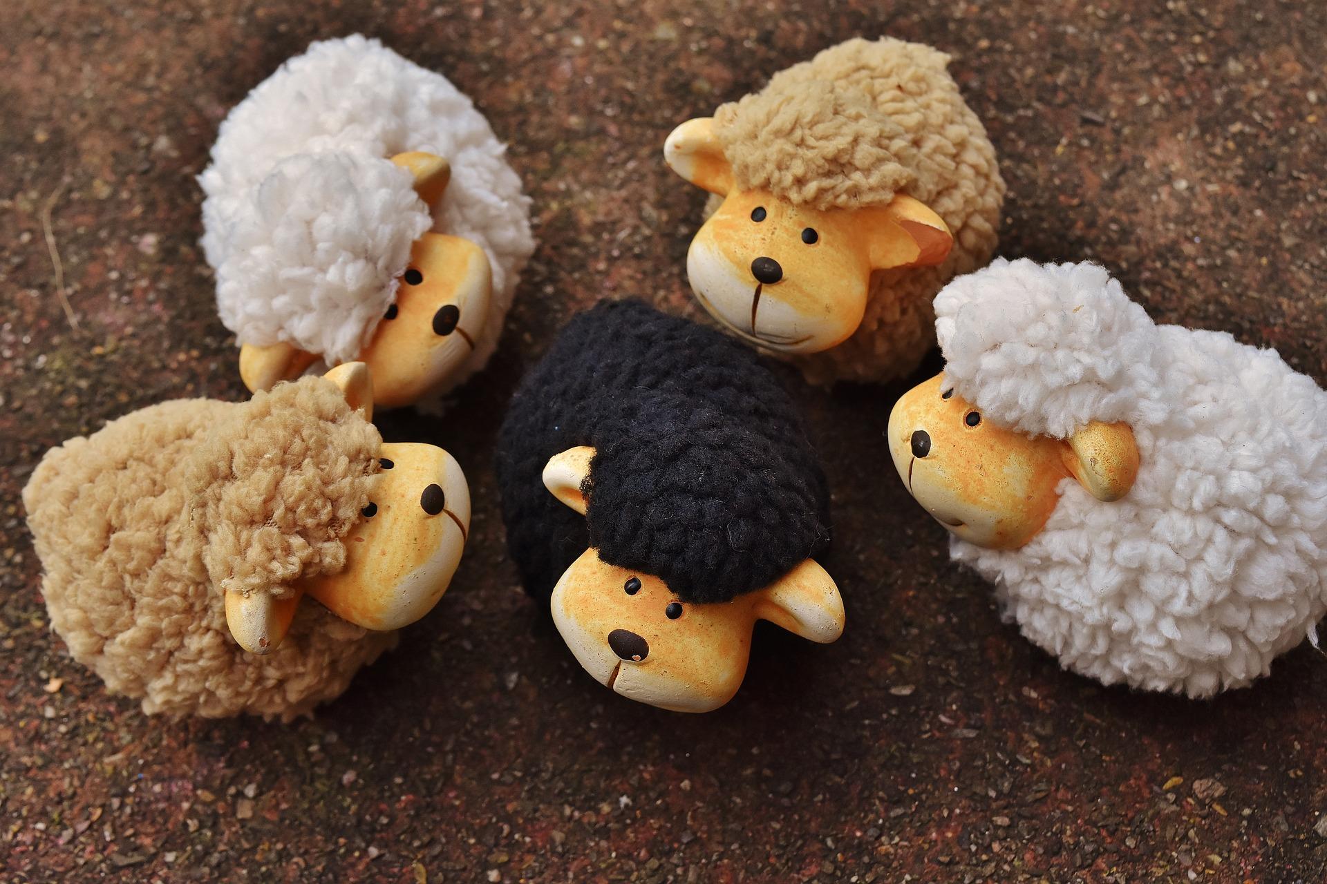 La oveja negra cumple un rol necesario en el sistema familiar.